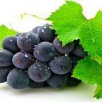 grappe-de-raisin,-les-feuilles-de-vigne-163399